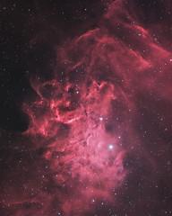 Flaming Star Nebula  (由  AstroBackyard