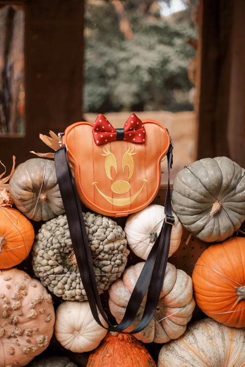 Harvey's Mini Pumpkin Convertible Crossbody