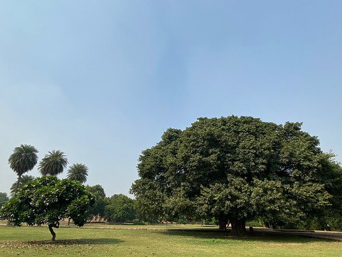 City Monument - Beyond Humayun's Tomb, Humayun's Tomb | by Mayank Austen Soofi