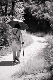 Hiking during Pandemic