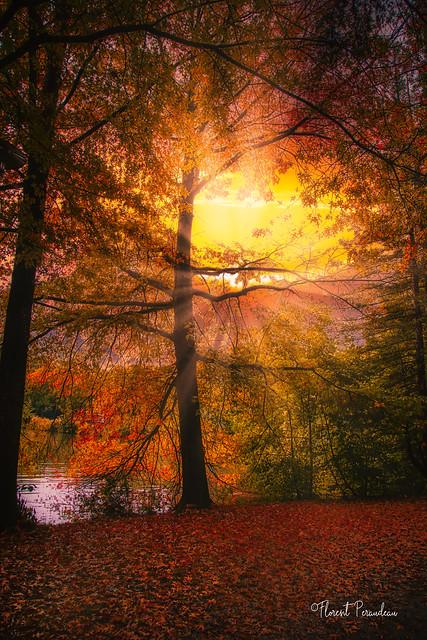 coucher de soleil automnal