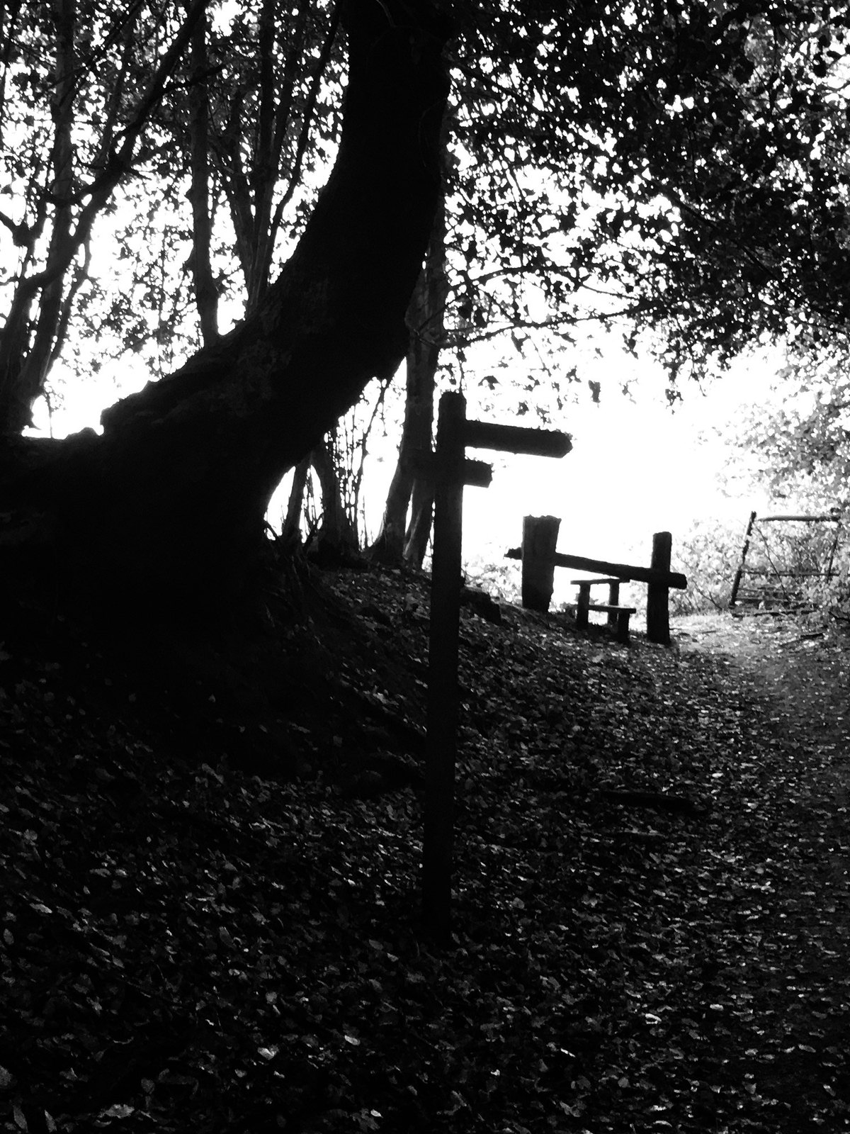 Fingerpost and Stile Balcombe to East Grinstead