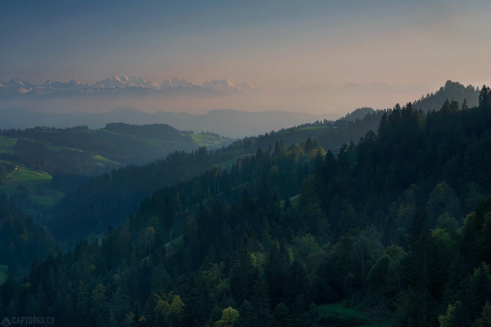 Forest and fog - Lüderenalp