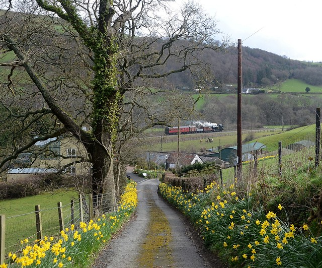 Springtime in the Dee Valley