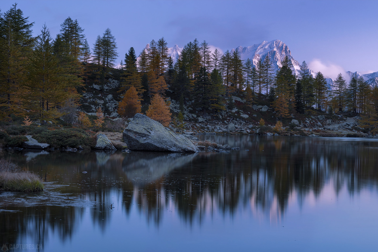 Larches and the mountains - Lago d'Arpy