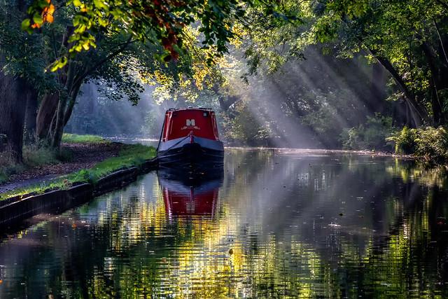 Mid Morning Mist