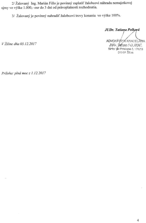 Strana 4 žaloby