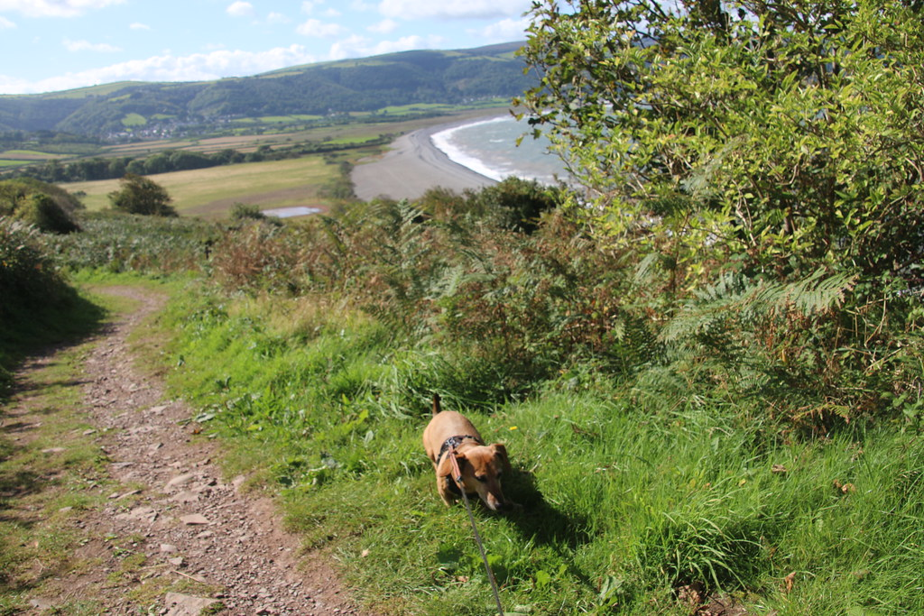 Looking to Porlock Weir