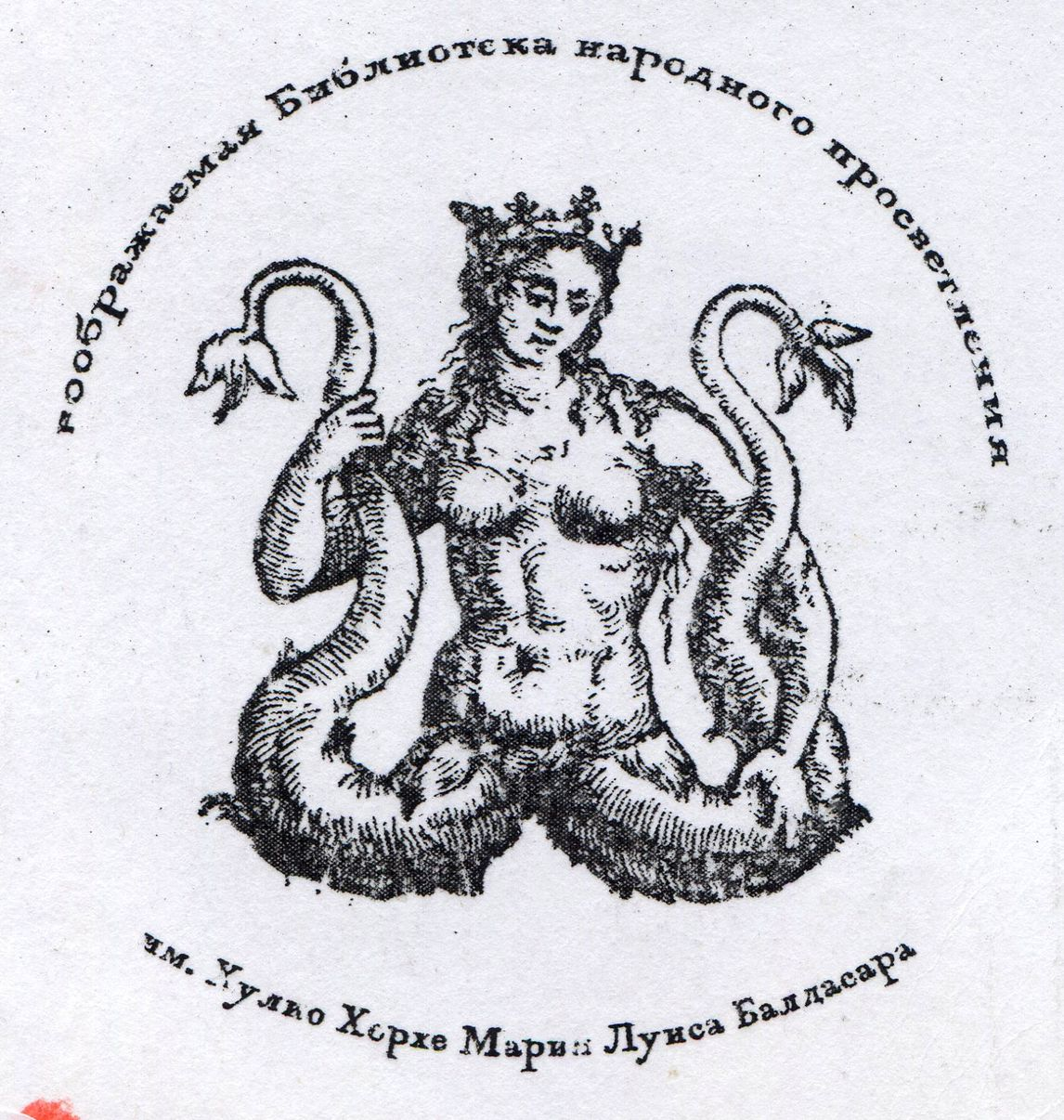 img339
