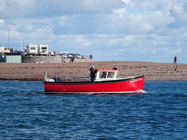 Summer Wine EX:(SE1 & FY506)  EX;Looe Fishing Boat now in Teignmouth.