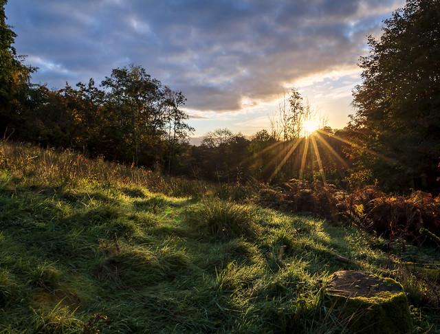 Sunrises, Lochwinnoch, Renfrewshire, Scotland, UK