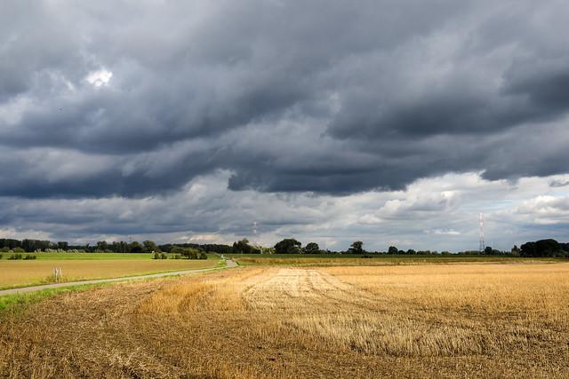 Zons - Wolken und Feld