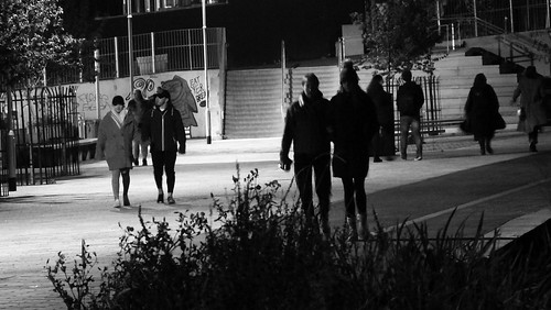 Nocturnal Stroll
