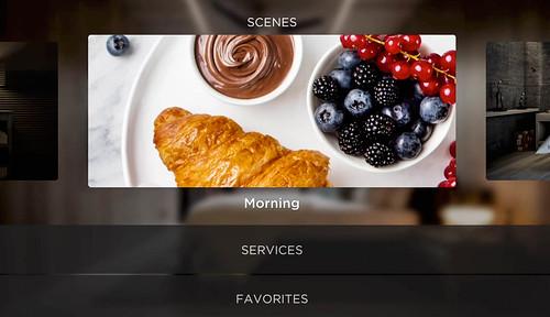 Savant_interface-4.jpg