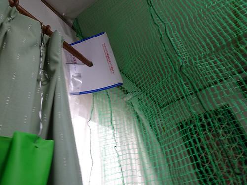 コザクラインコの放鳥用の仕切りネット