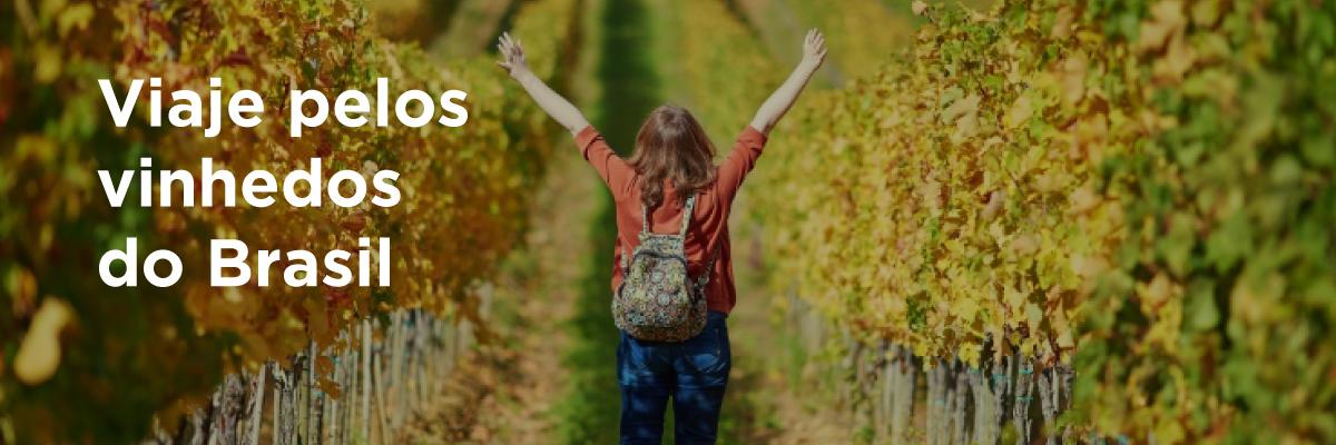 Viaje pelos vinhedos do Brasil