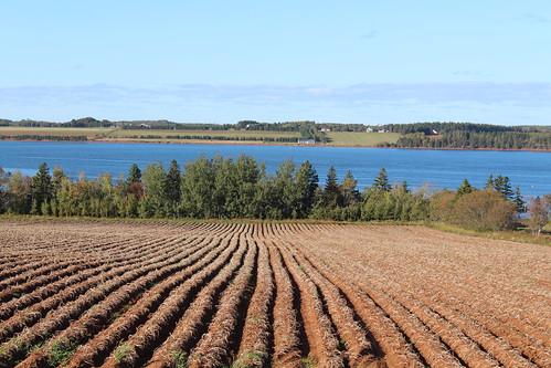 stpeters stpetersbay pei canada farm fields view