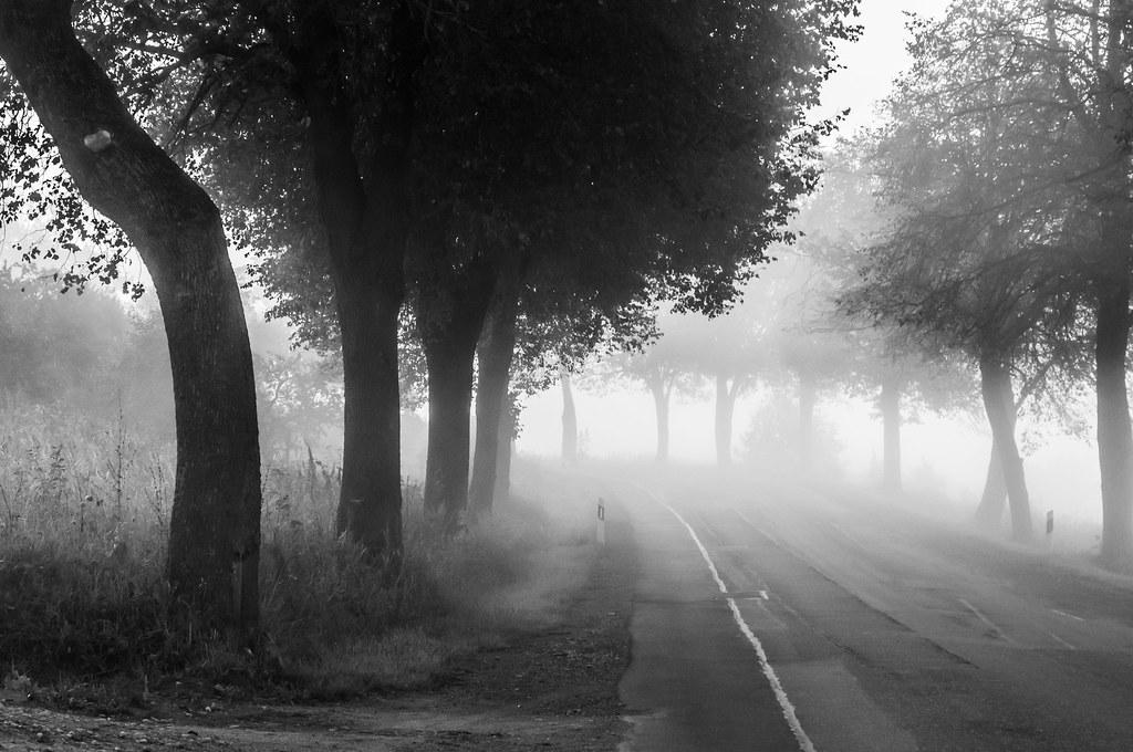 Early morning gloom