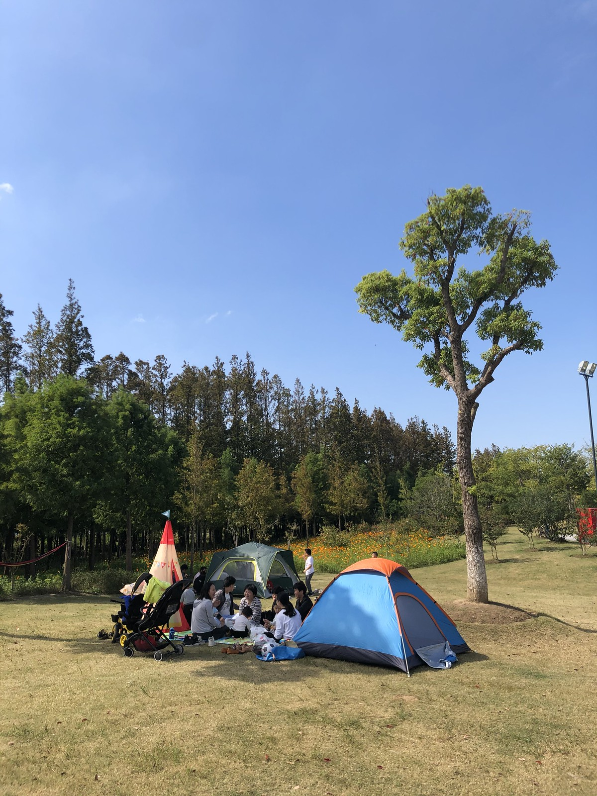 Shanghai Morning Glamping