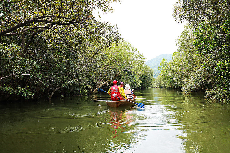 Hamilo Coasts's Mangrove Forest Where Man and Nature Live in Harmony