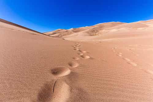 Sand Dunes | by Wild Frog Photography