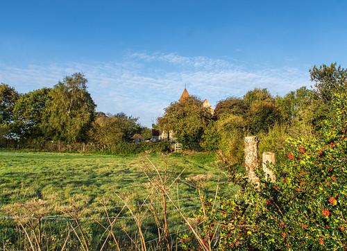 stlaurenceschurch guestling guestlingwoods hollyberries fence fenceposts trees spire weathervane