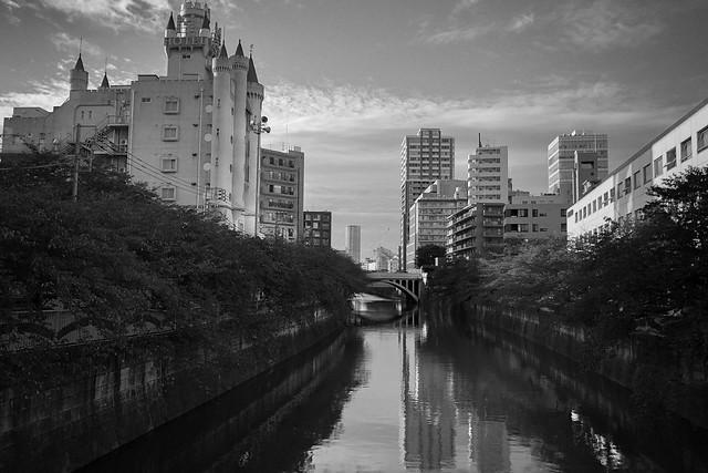 IMG_2215.jpg
