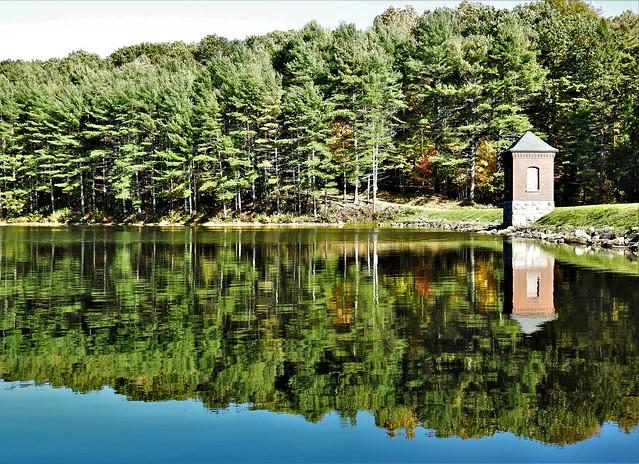 Reflection ~ Horse Pond