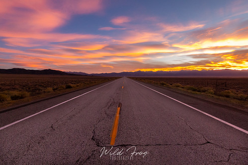 Sunrise on the road | by Wild Frog Photography