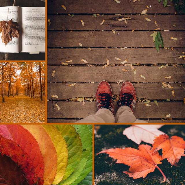 fall aesthetic 2