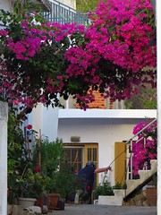 Morning in Pirgos village.