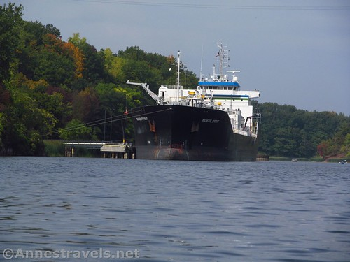 The laker on the Genesee River, Rochester, New York