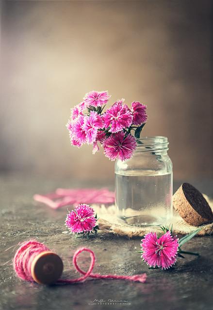 "Still life of small flowers"""