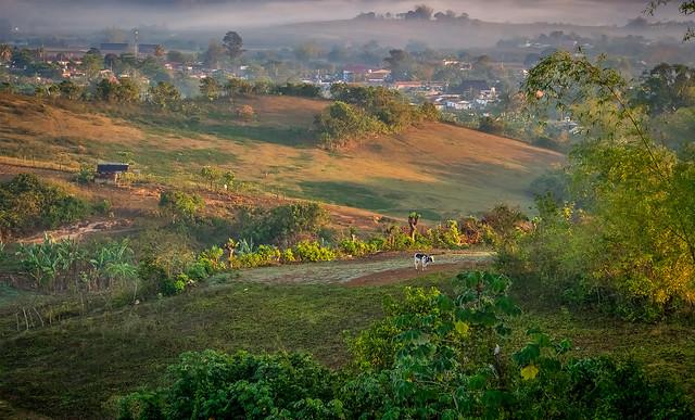 Morning Fog in Valle de Viñales