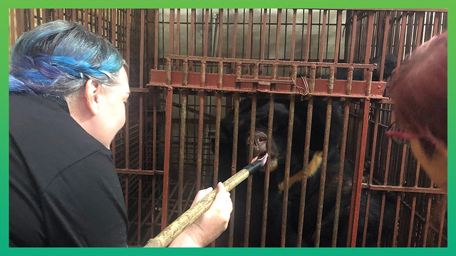 #UnoRescue - treats and initial inspection