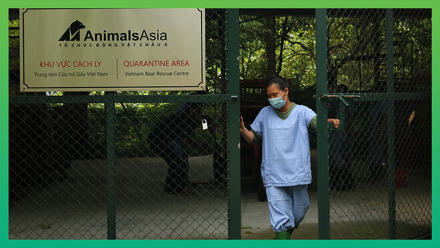 #UnoRescue - Uno begins quarantine