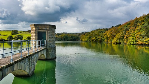 autumn reservoirs linacre trees derbyshire landscapes xe3