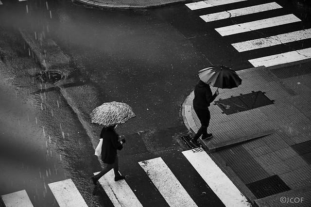 Deseos de lluvia.