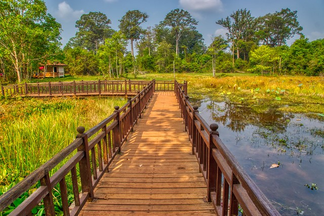 Wooden bridge over a lake near Banteay Srei temple ruins near Siem Reap, Cambodia