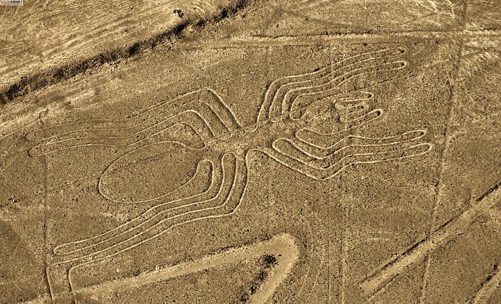 wikicabinet-anh-duong-nazca-o-peru