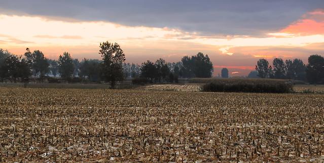 Goodmorning - Melsele - Belgium