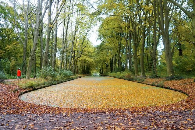 Herfst in Marlot