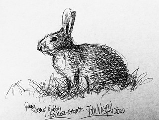 Quick sketch of Rabbit. Ballpoint pen drawing by jmsw on recycled card. Only on this site just for Fun.