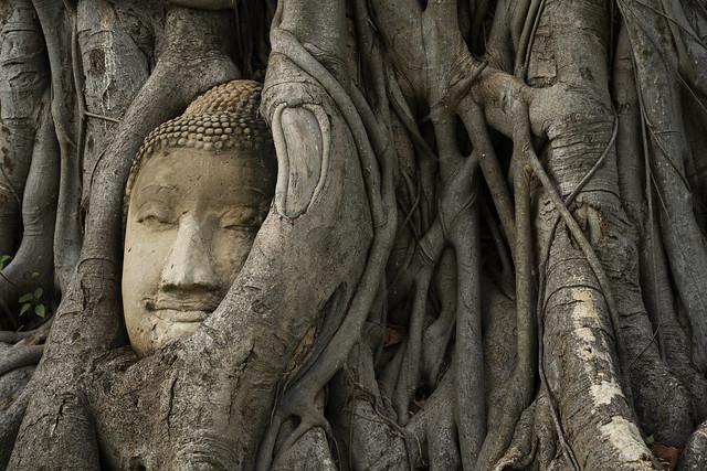 Buddha at Wat Nok 8a