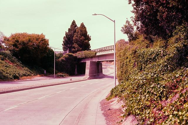 Last of Series // Lafayette, Santa Clara, California