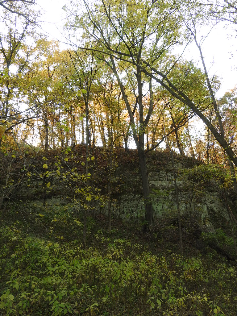 Sandstone bluff. Cannon River Trout Lily Scientific and Natural Area, Rice County, Minnesota. October 9, 2020.