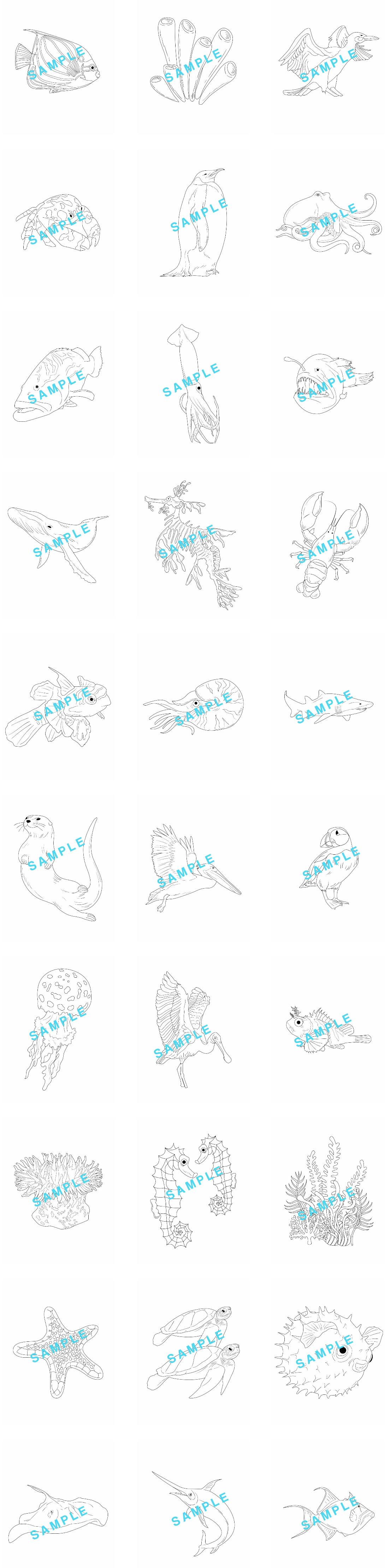 Aquatic-Animals-Coloring-Pack-feature