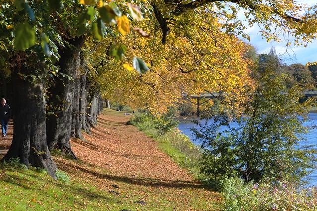 Autumn in Avenham Park, Preston