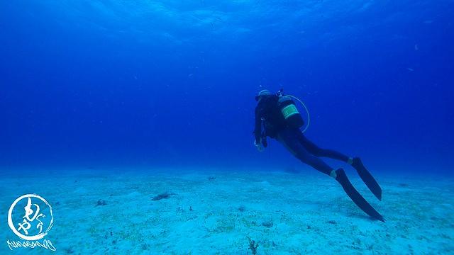 青い海を見て何を想う?