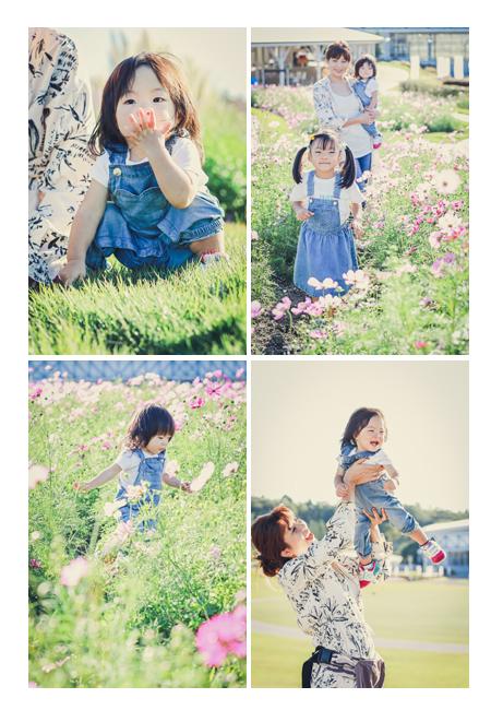 コスモス畑で親子撮影 ママと姉妹